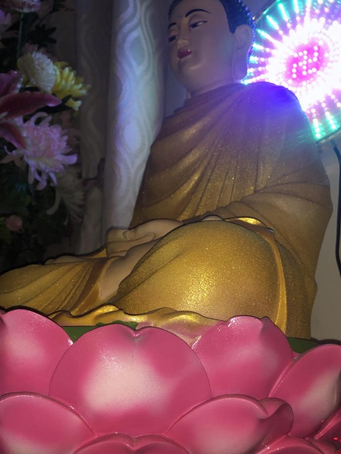 Buddha and His Beautiful Lotus