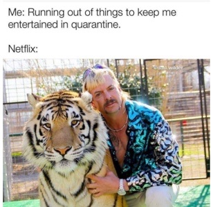 "A Tiger King meme posted by the Instagram account @dad.wilder on March 21, 2020, captioned: ""Thanks @netflix, keep em coming!"""