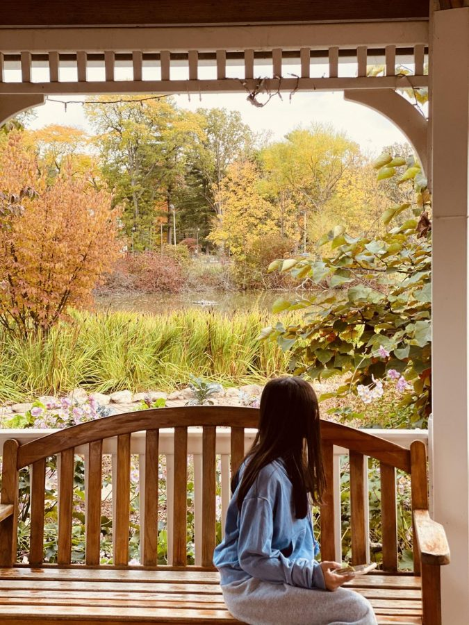 Photographed in this picture is a girl in the park enjoying the fresh fall air and beautiful scenery