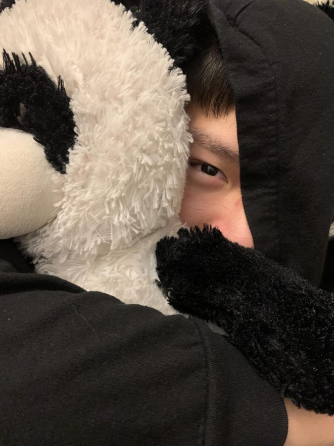 The brother of the writer is snuggling with his panda, playfully looking back.